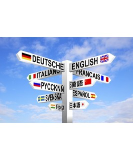 The new Pearson GCE 'A' Level and 'AS' in Languages – Understand, plan, deliver! Call 01283 568440 to run this event in your school